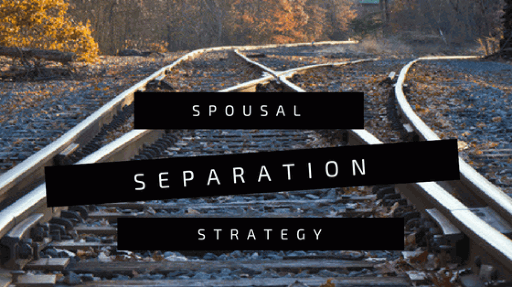 Divorce and Separation Strategy